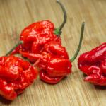 The Pepper Showdown - Habanero Vs. Carolina Reaper
