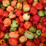 Where to Buy Carolina Reapers and Other Peppers?